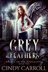 Grey Feathers cover