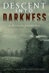 Descent into Darkness Cover
